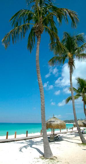 Beaches041